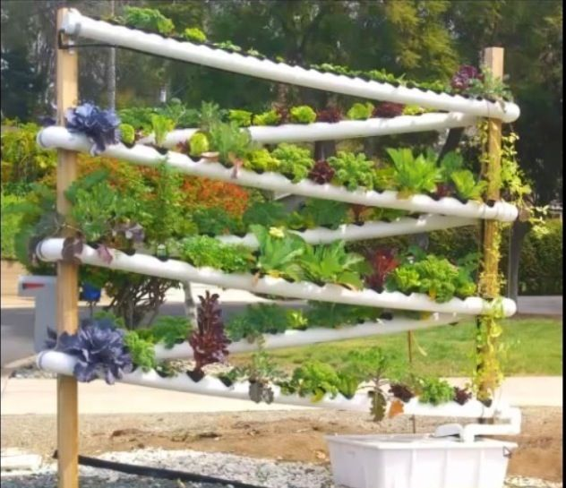 Vertical Aquaponics Growing System Gardening Pinterest