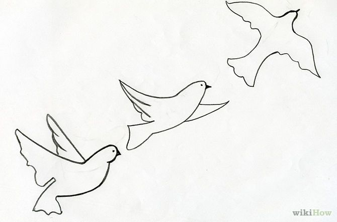 Flying Bird Drawing Tumblr Sketch Coloring Page