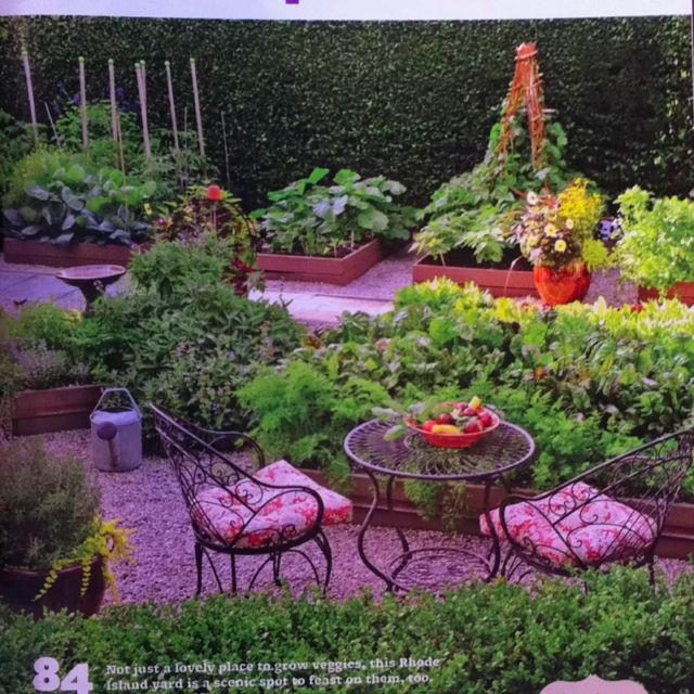 Vegetable Garden Ideas Pinterest Photograph | Vegetable gard