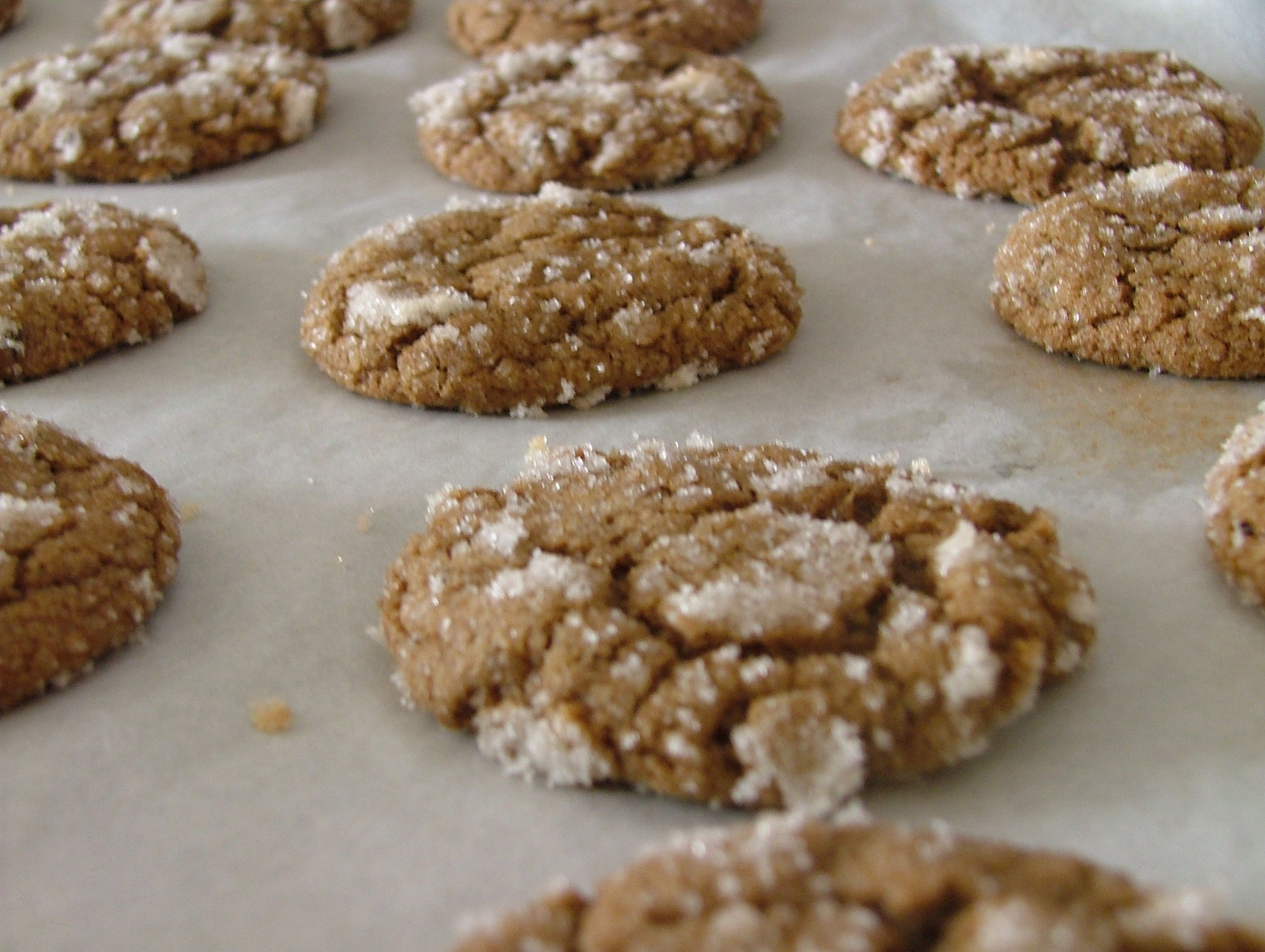 Sugar Crusted Ginger Chewies Recipes — Dishmaps
