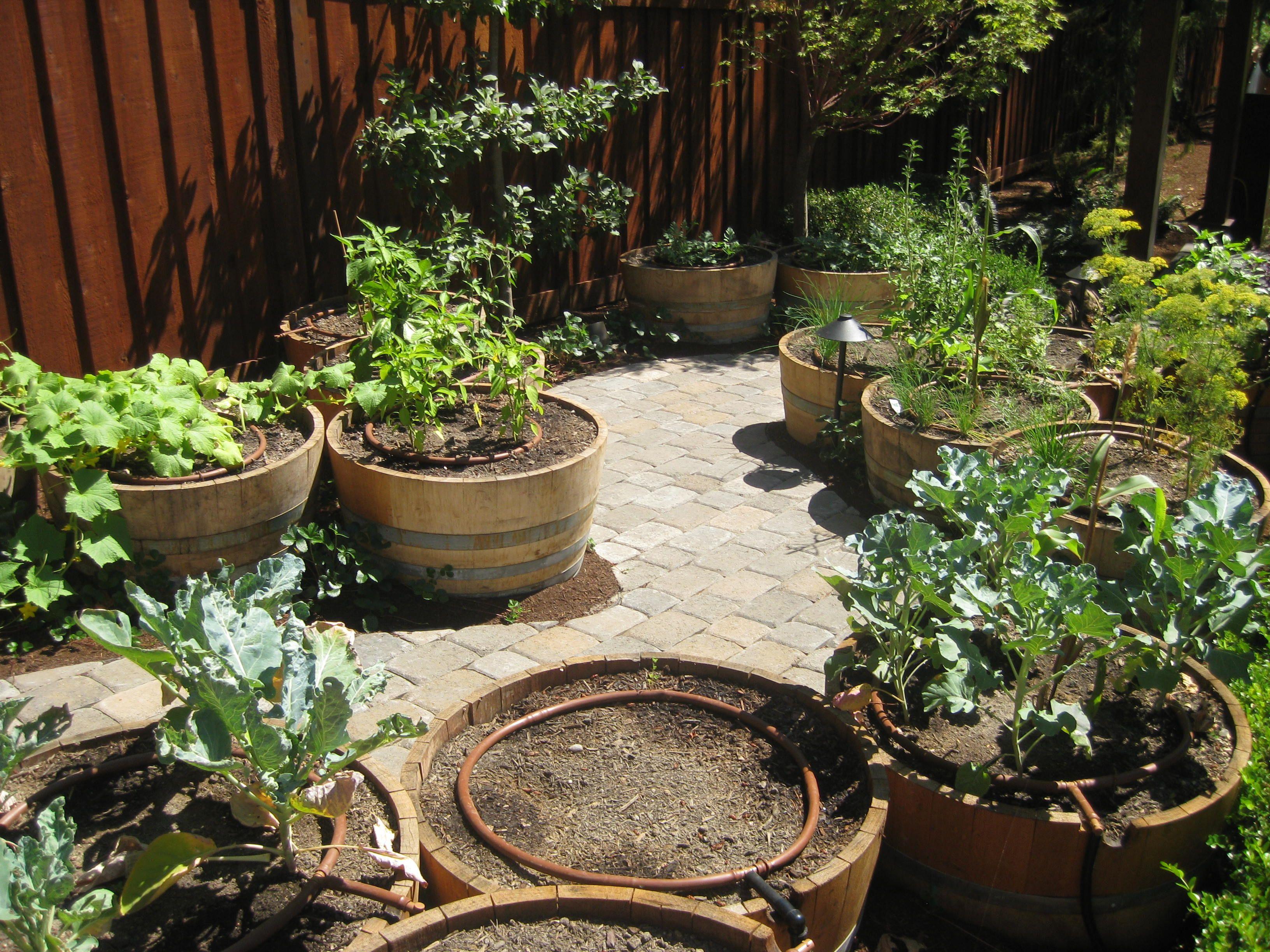 water drip system raised garden beds Gardening Pinterest