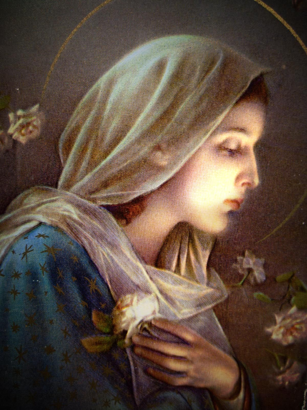 Blessed virgin mary mama mary pinterest