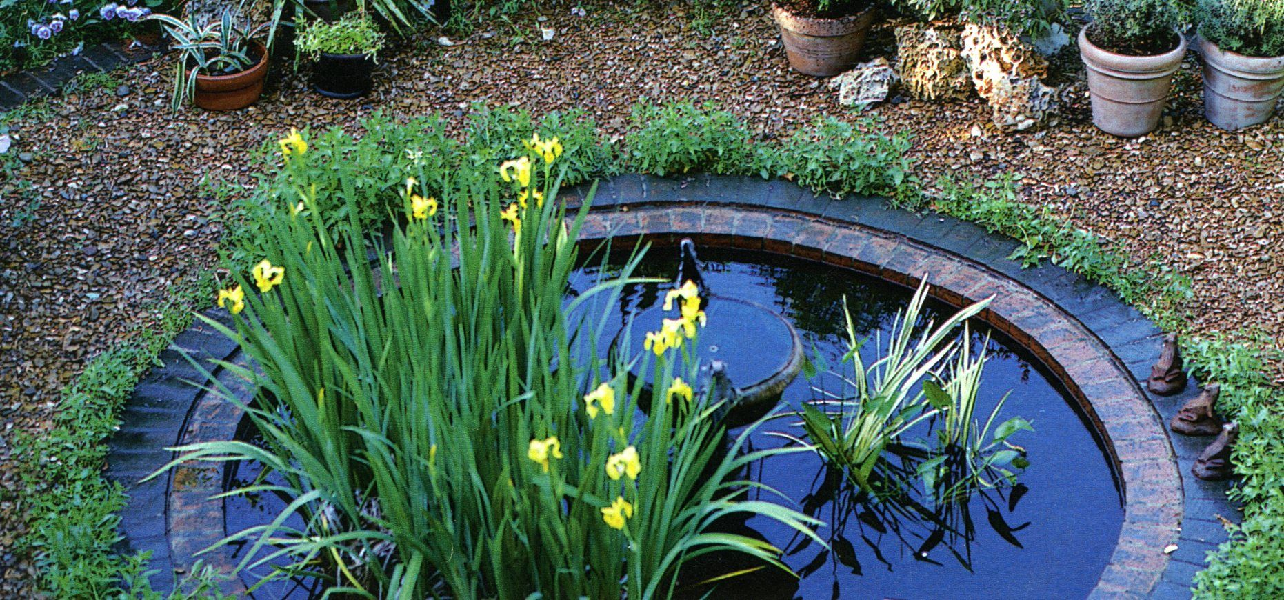Small backyard pond backyard ideas pinterest for Pond ideas for small yards