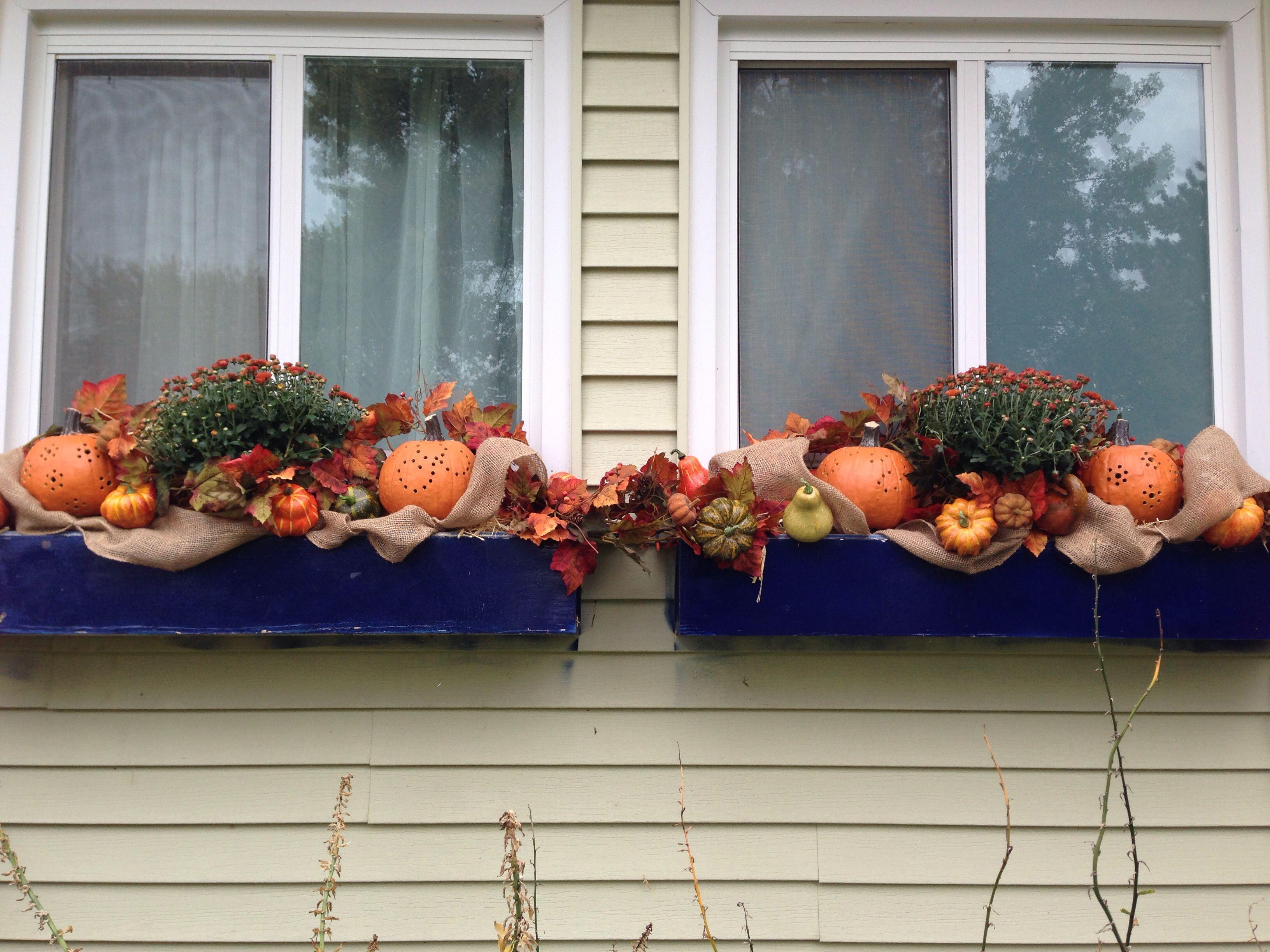 Fall window boxes festive decor wreaths etc pinterest - Window decorations for fall ...