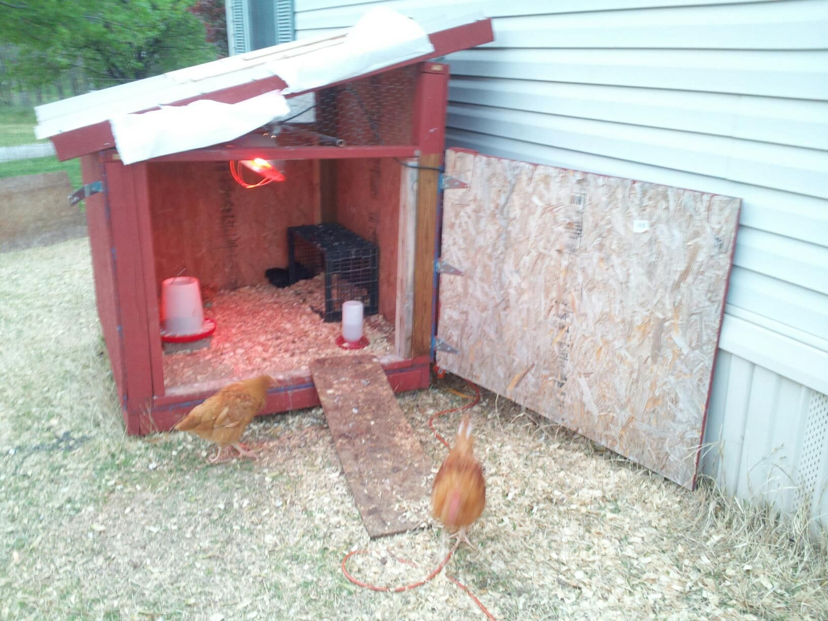 Pin by elizabeth purvis on chickens pinterest for Moving chicken coop plans