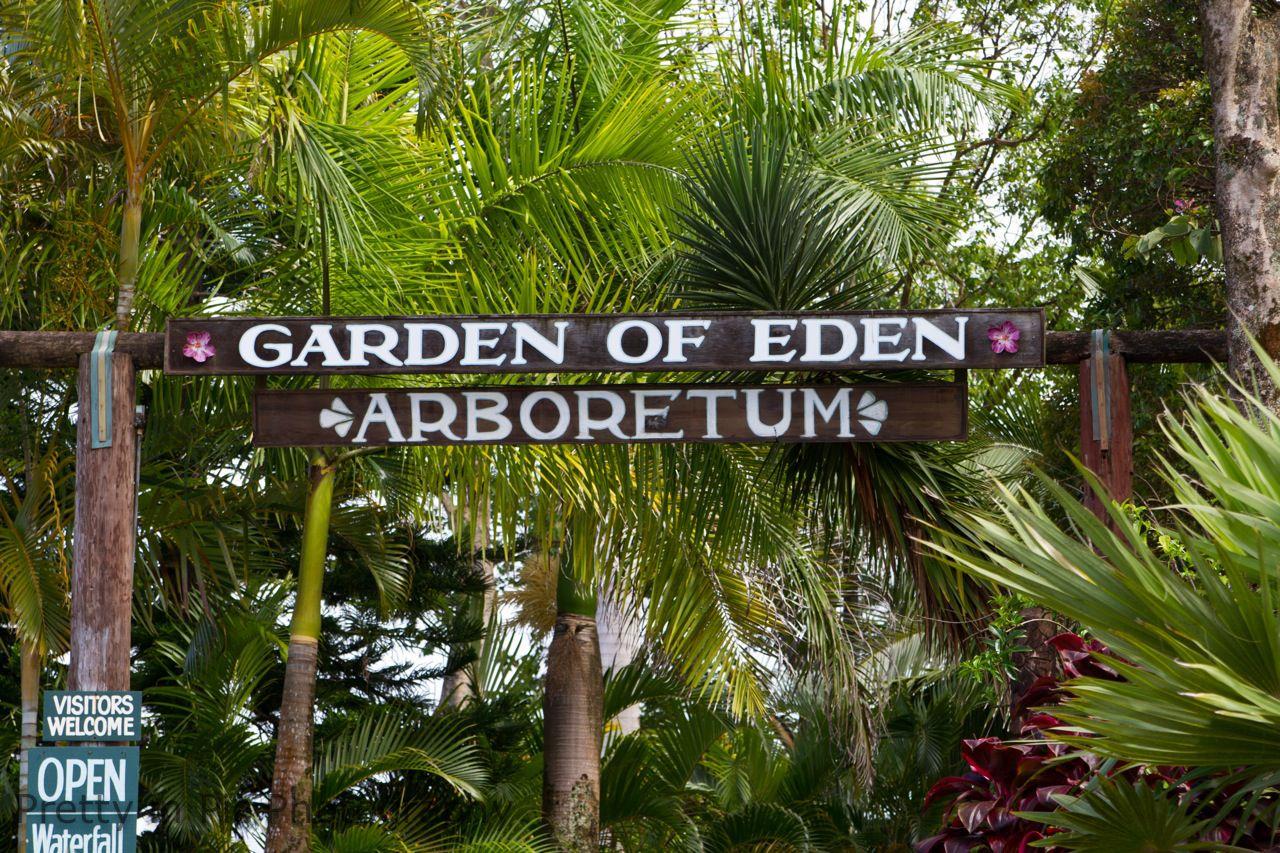Garden of eden arboretum maui pinterest for Jardin of eden