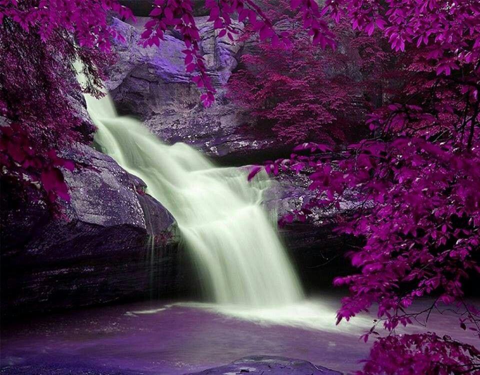 Beautiful All Things Purple Pinterest