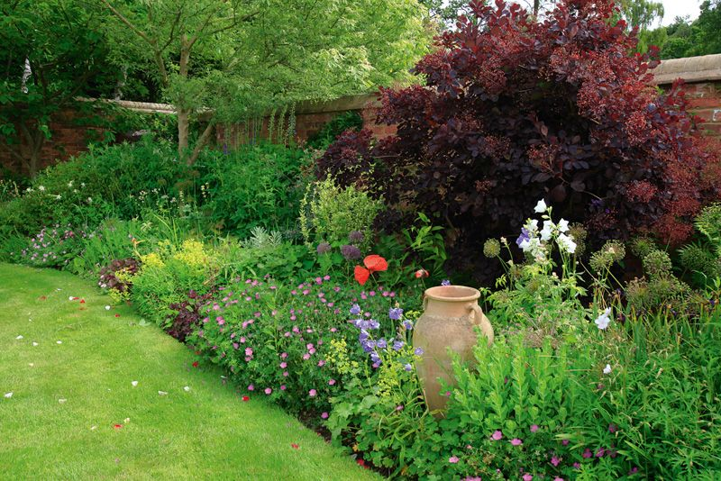 PERENNIAL FENCE BORDERS For the Home Pinterest