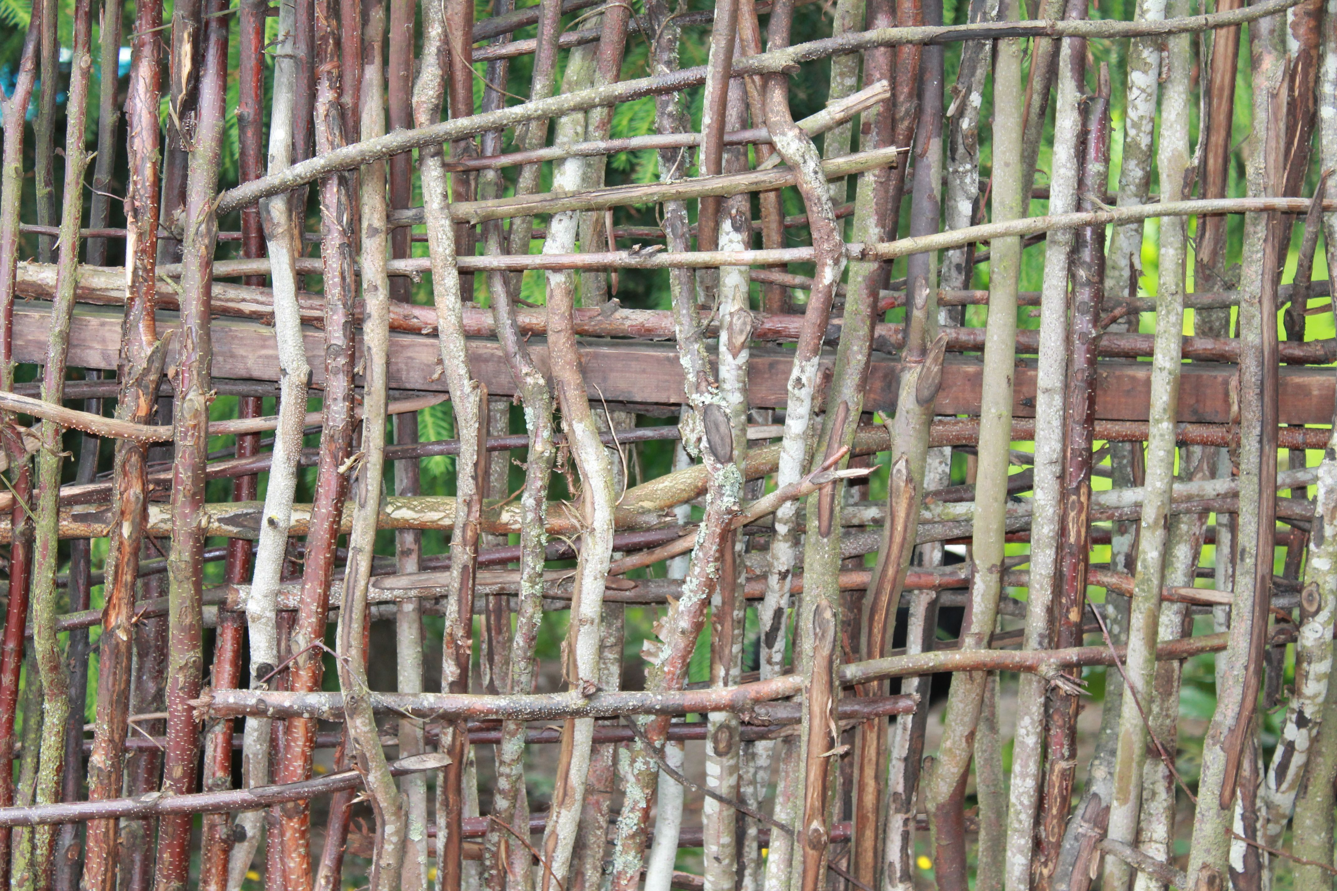 Fence made from tree branches garden pinterest