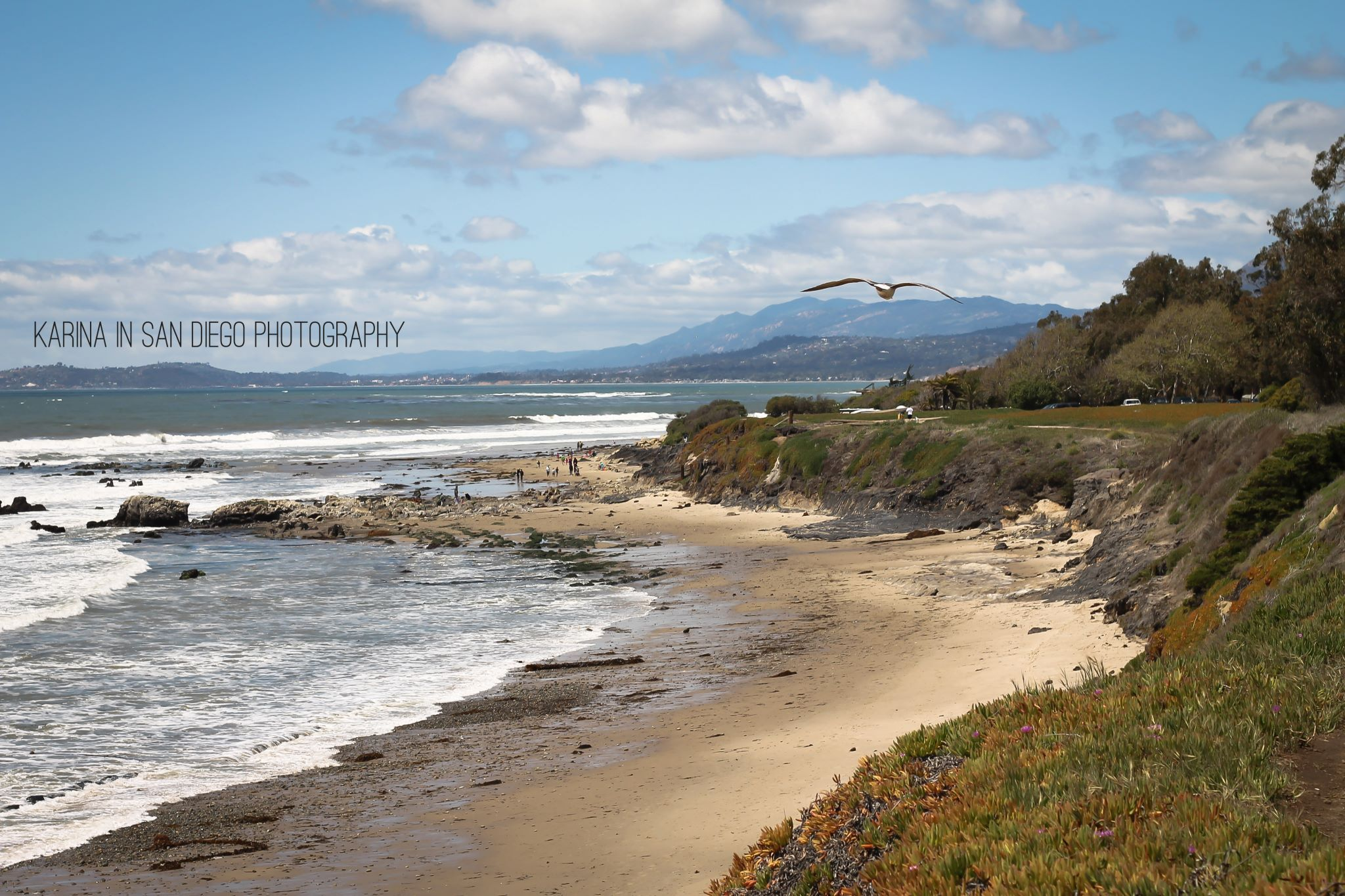 Carpinteria State Beach Carpinteria Ca
