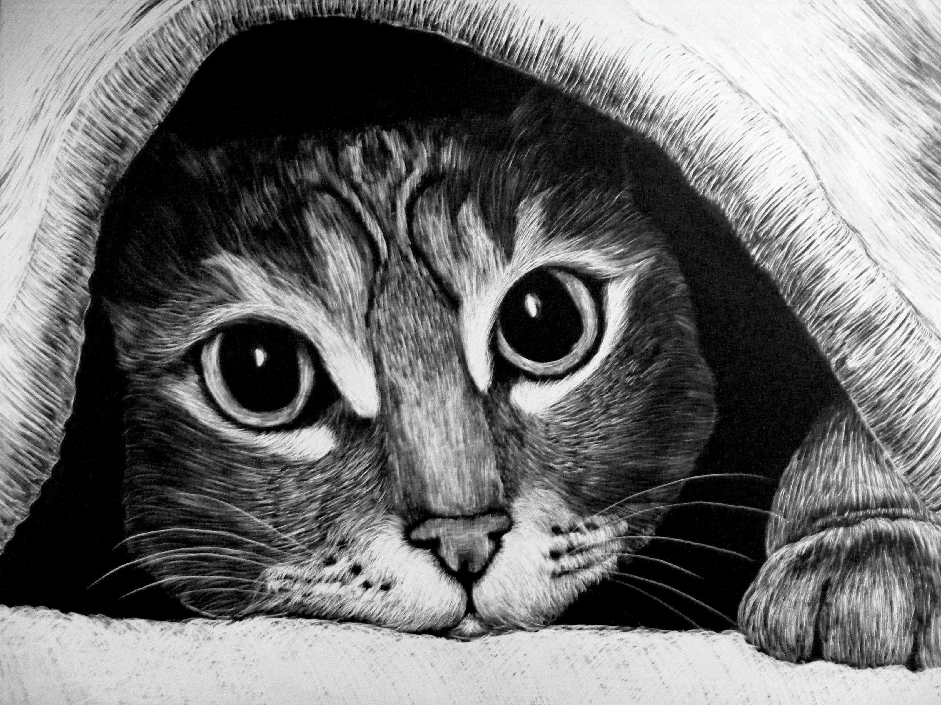Easy scratch art drawings