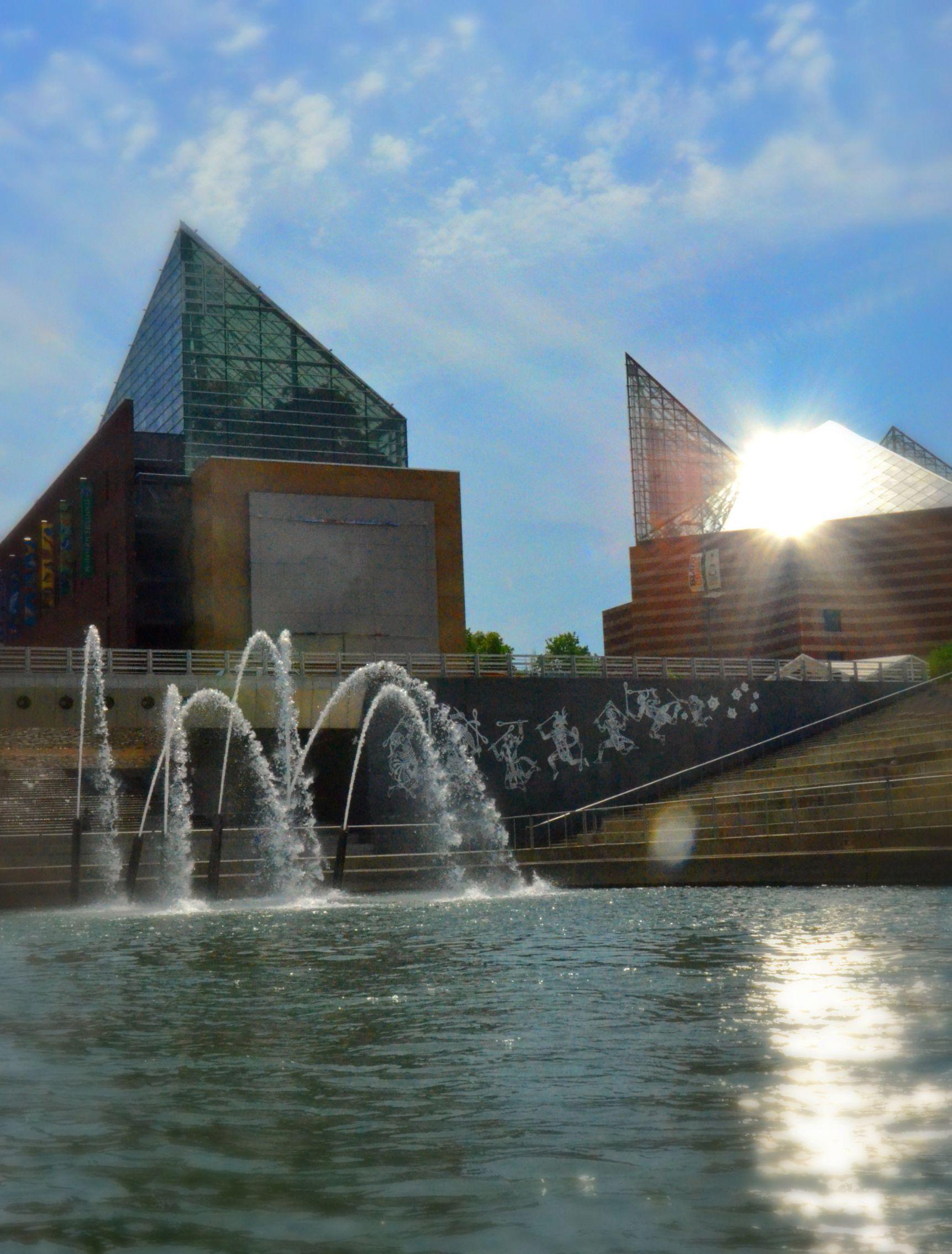 Chattanooga Aquarium Myhometownpins Cha Love Pinterest