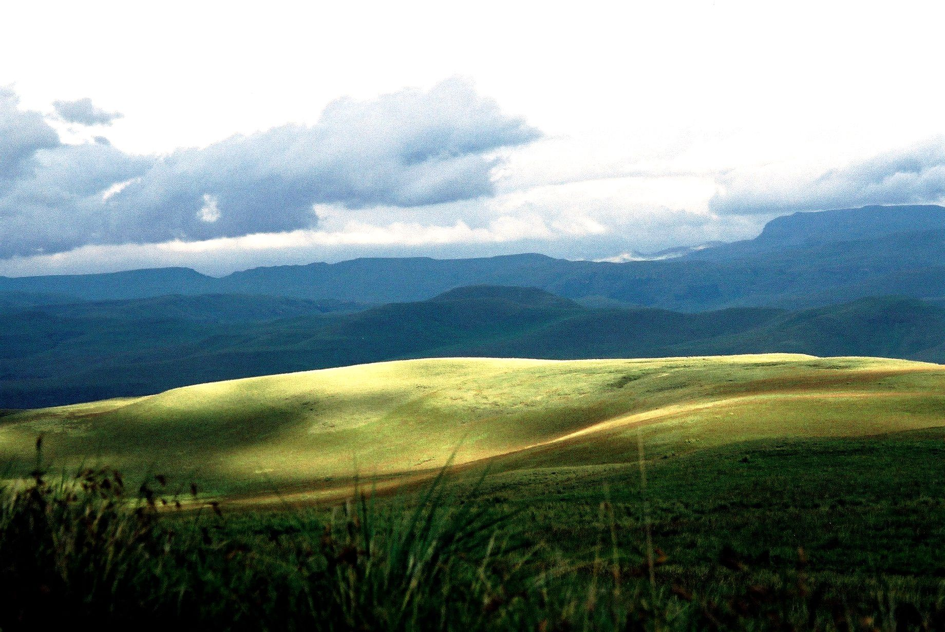 South african landscape colour and knit pinterest for Landscape sa
