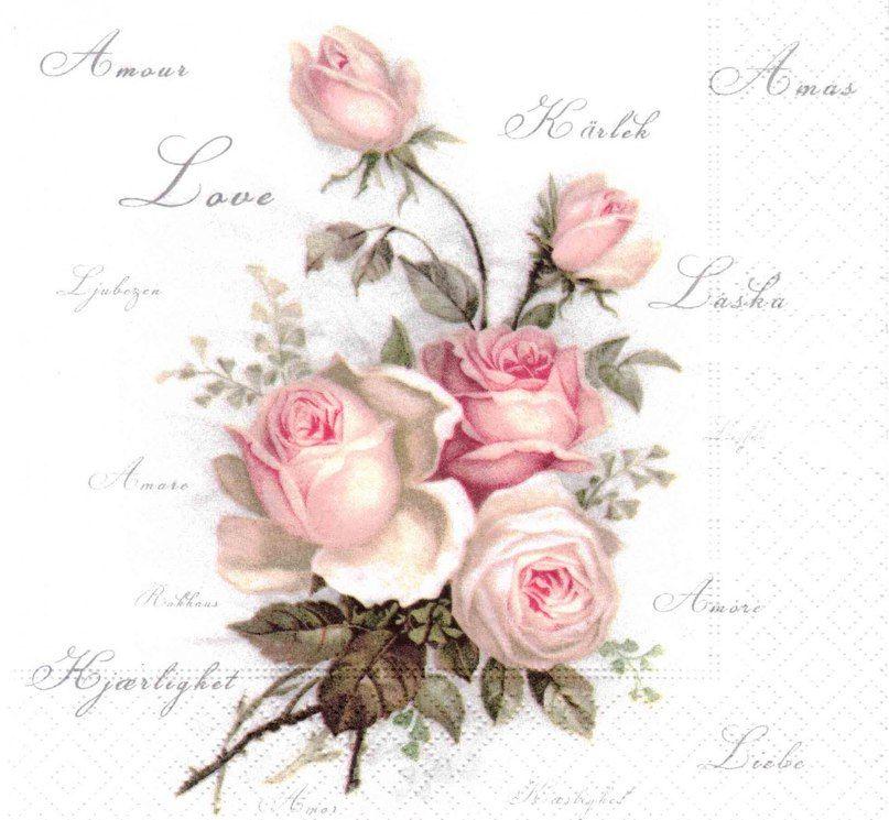 Цветок лилия фото садовая мебель из