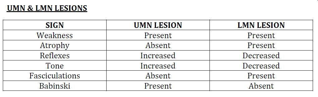Upper vs lower motor neuron disease neurology usmle for Upper motor neuron syndrome symptoms