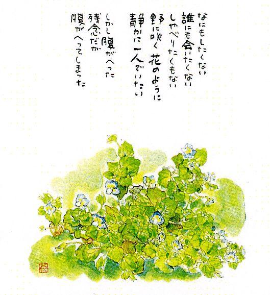 星野富弘の画像 p1_31