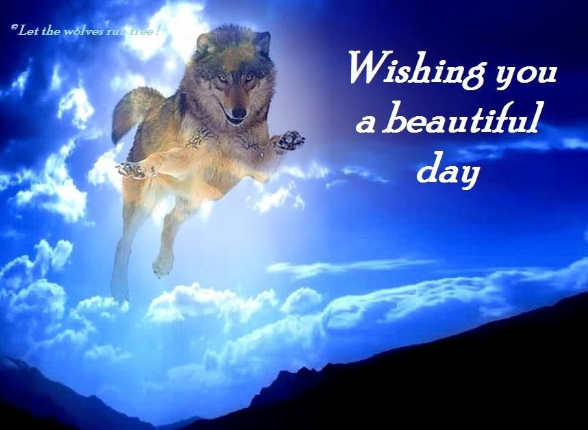 Image result for Wishing You a Wonderful Day