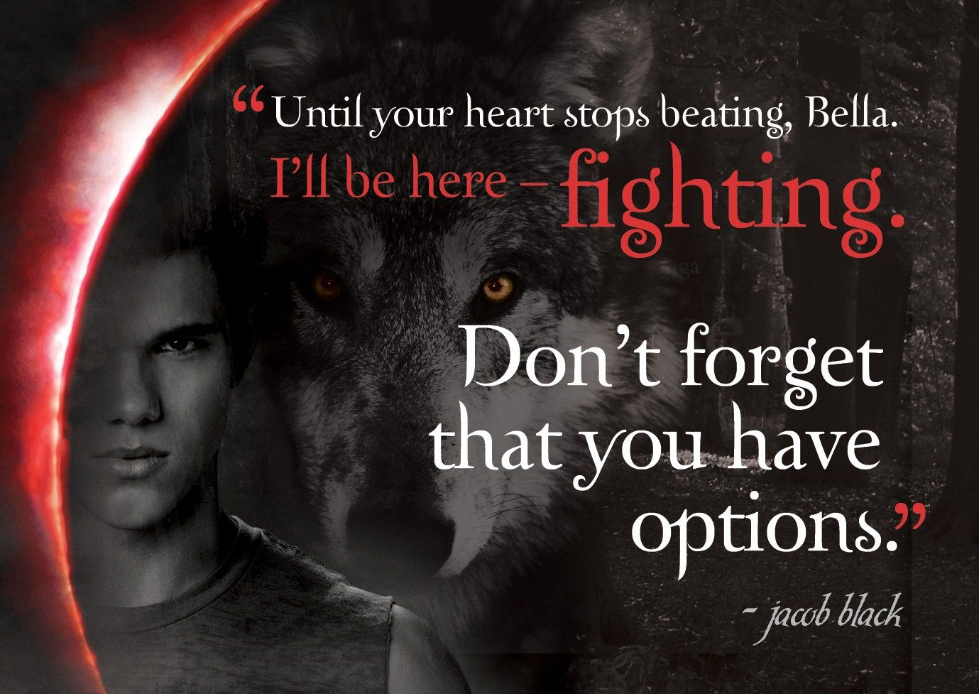 I'll be here fighting... Eclipse Quote Twilight