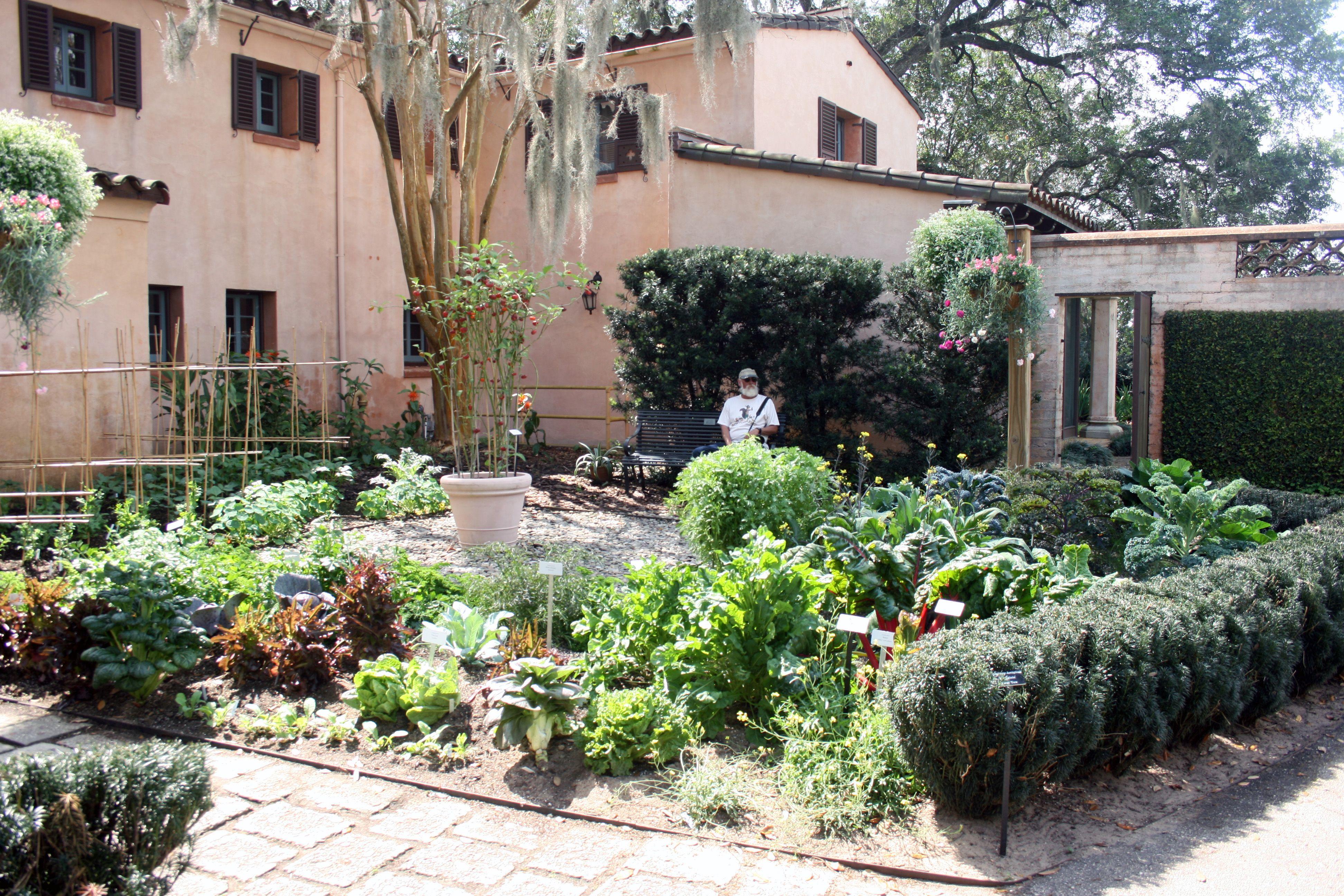 Pinterest Garden Ideas For Vegetables Photograph Vegetable