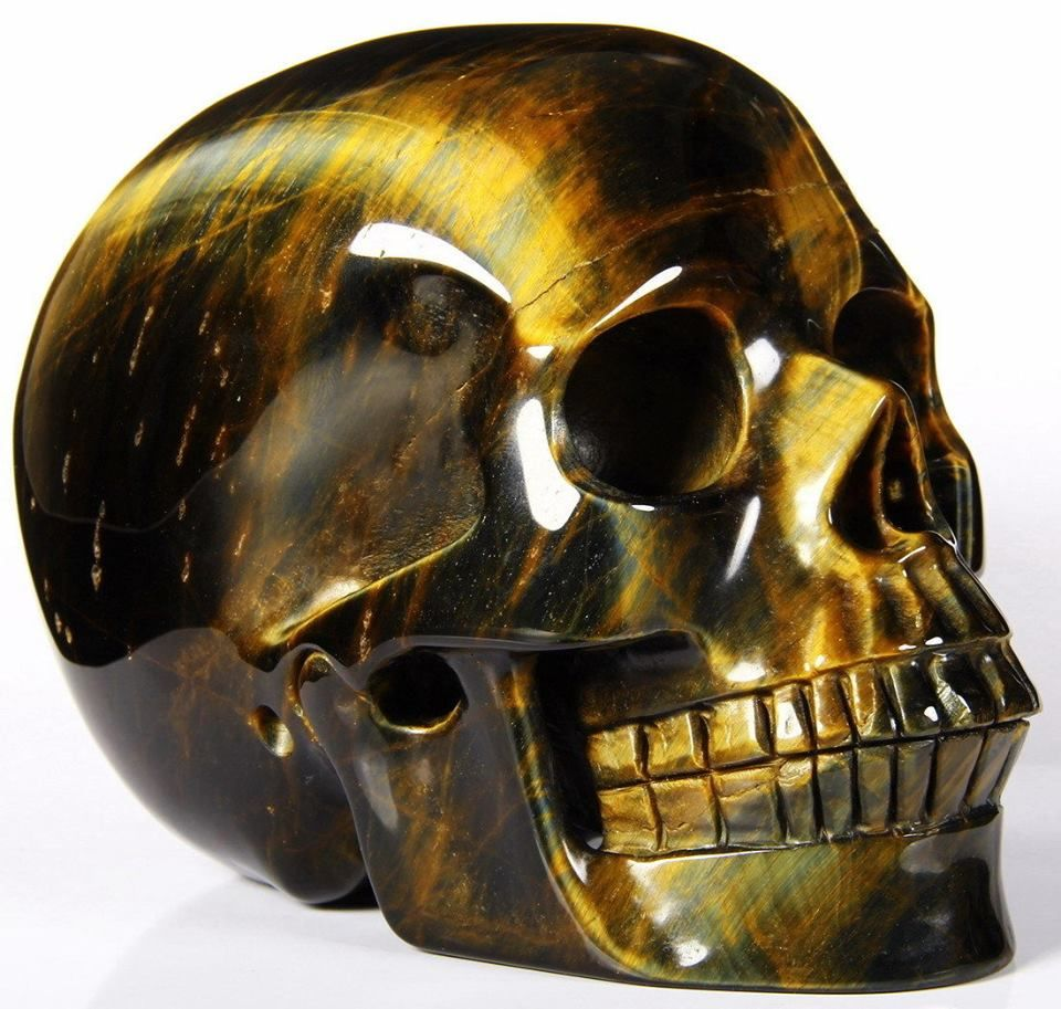 tiger s eye carved skull skulls