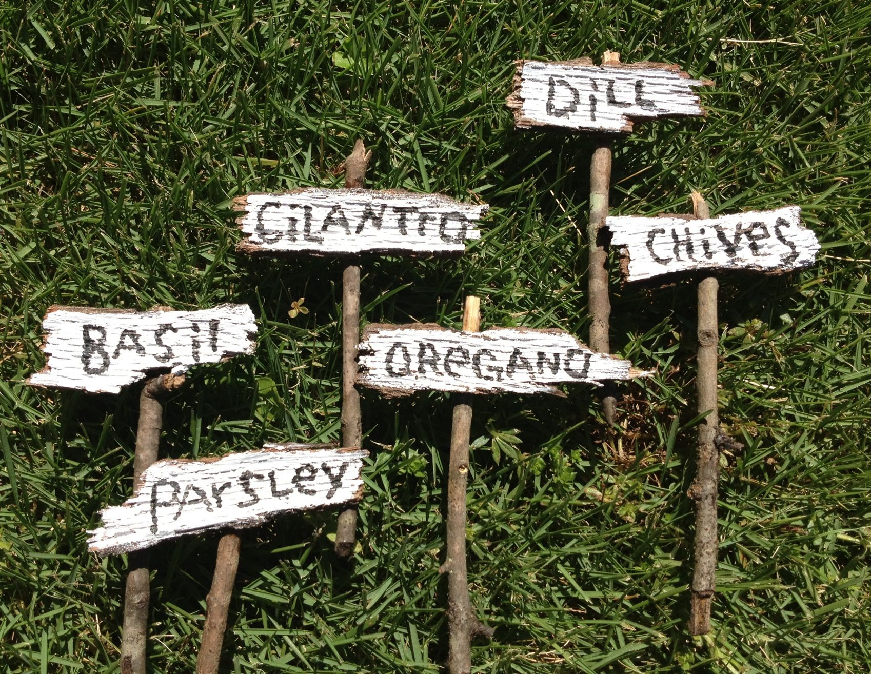 mini herb signs gardening is my therapy pinterest