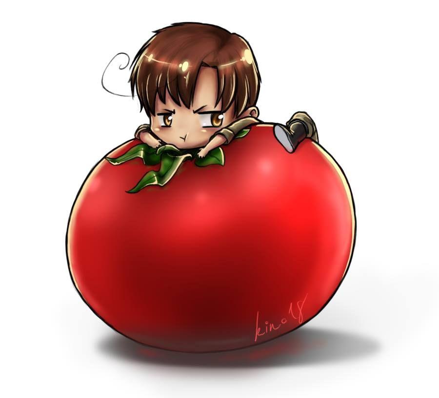 tomato | Illustration | Pinterest