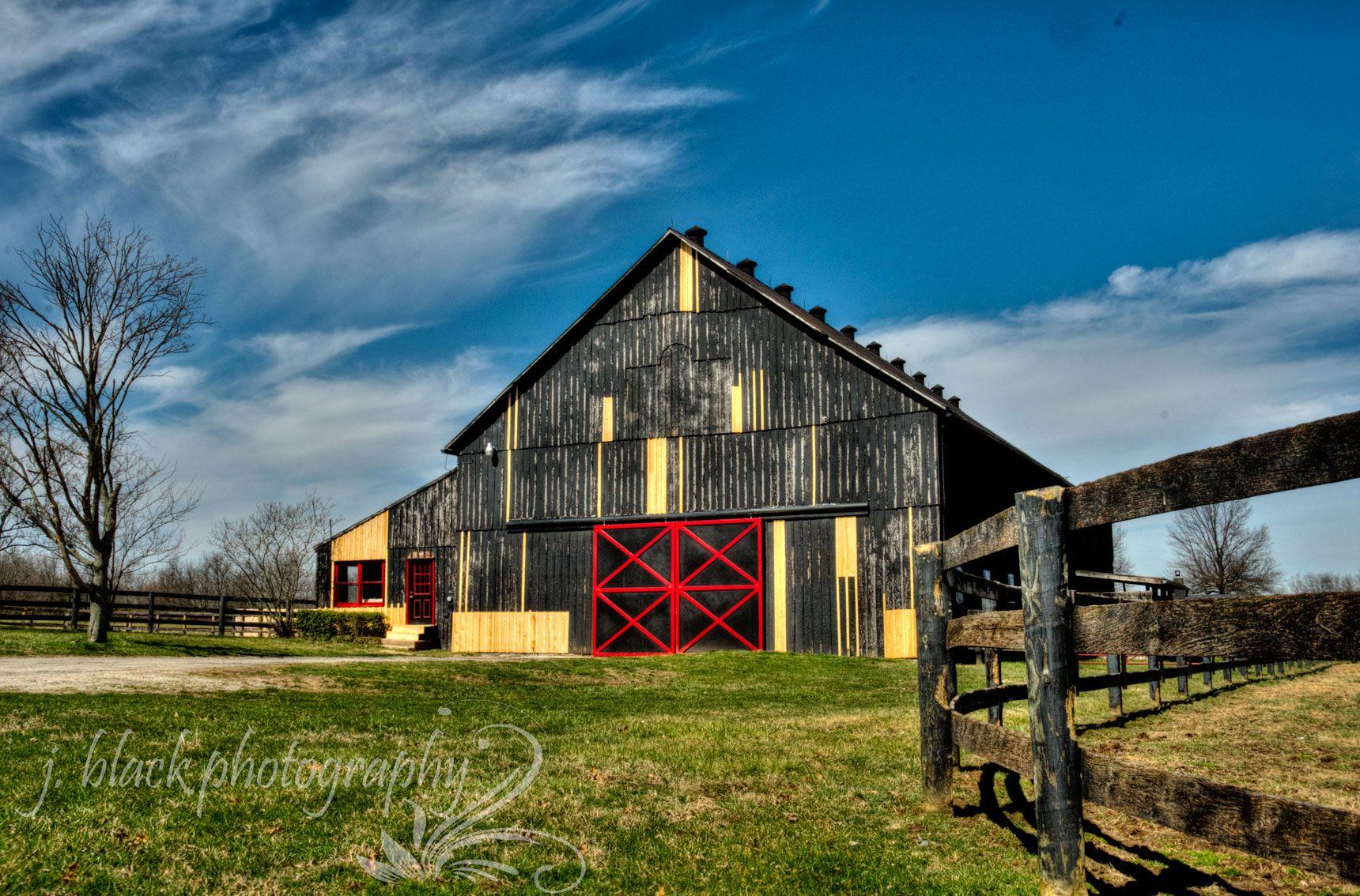 Lexington horse farm lexington ky my photography for Horse farm