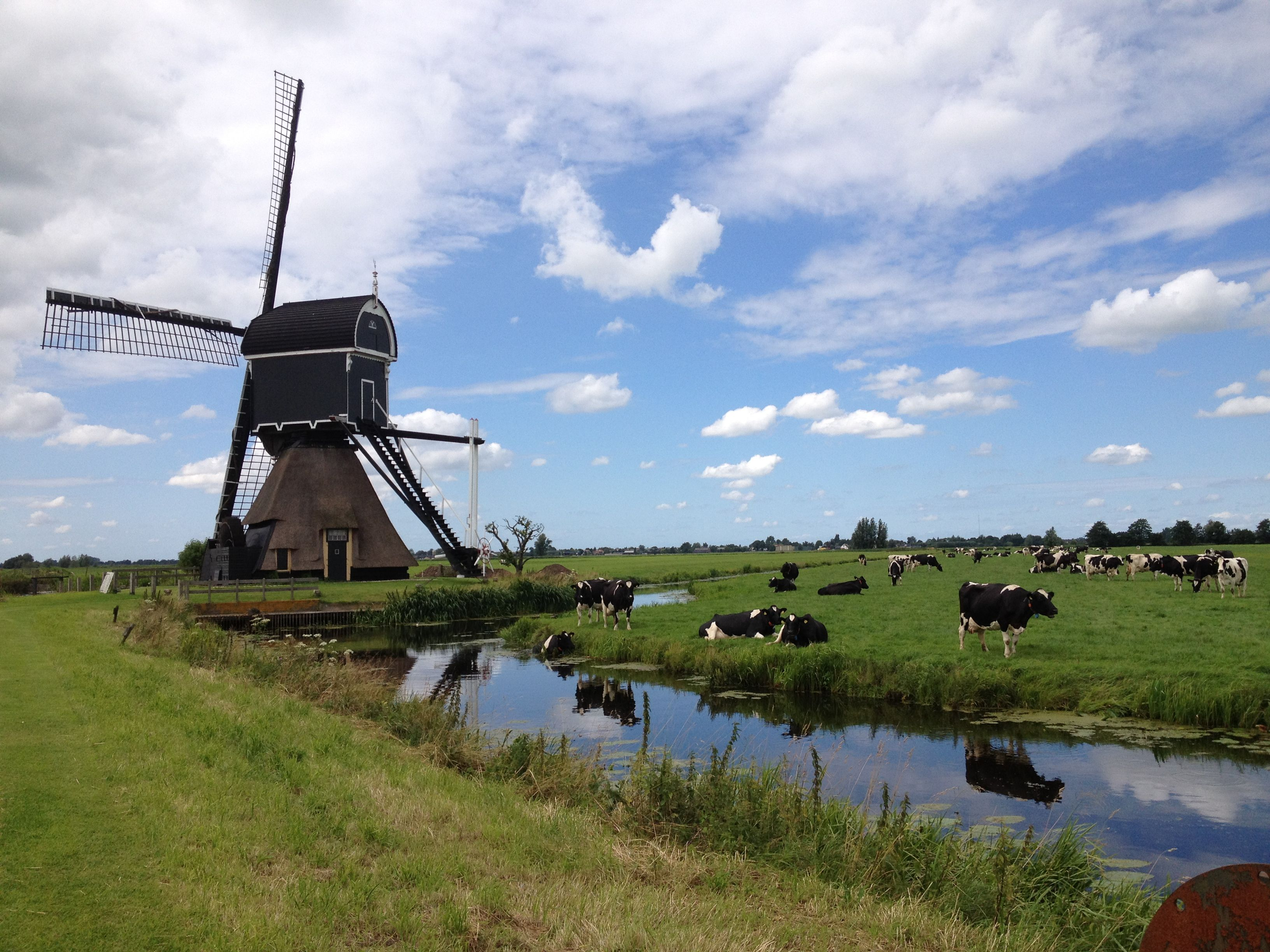 Dutch windmill | Dutch Windmills | Pinterest