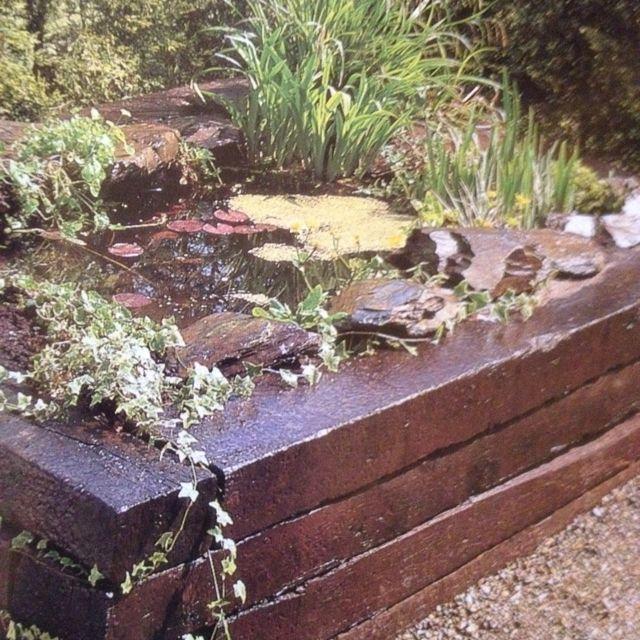 Raised pond  Outdoor & garden ideas  Pinterest