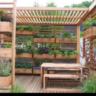 Privacy screen planter boxes garden pinterest for Vertical garden privacy screen
