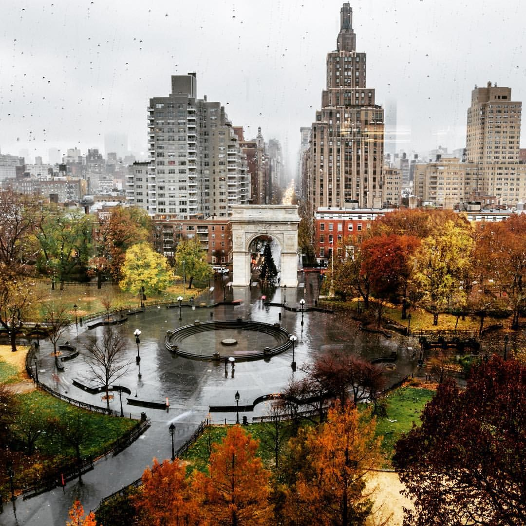 Savoring autumn's colors before they fade away at NYU by @nyuniversity
