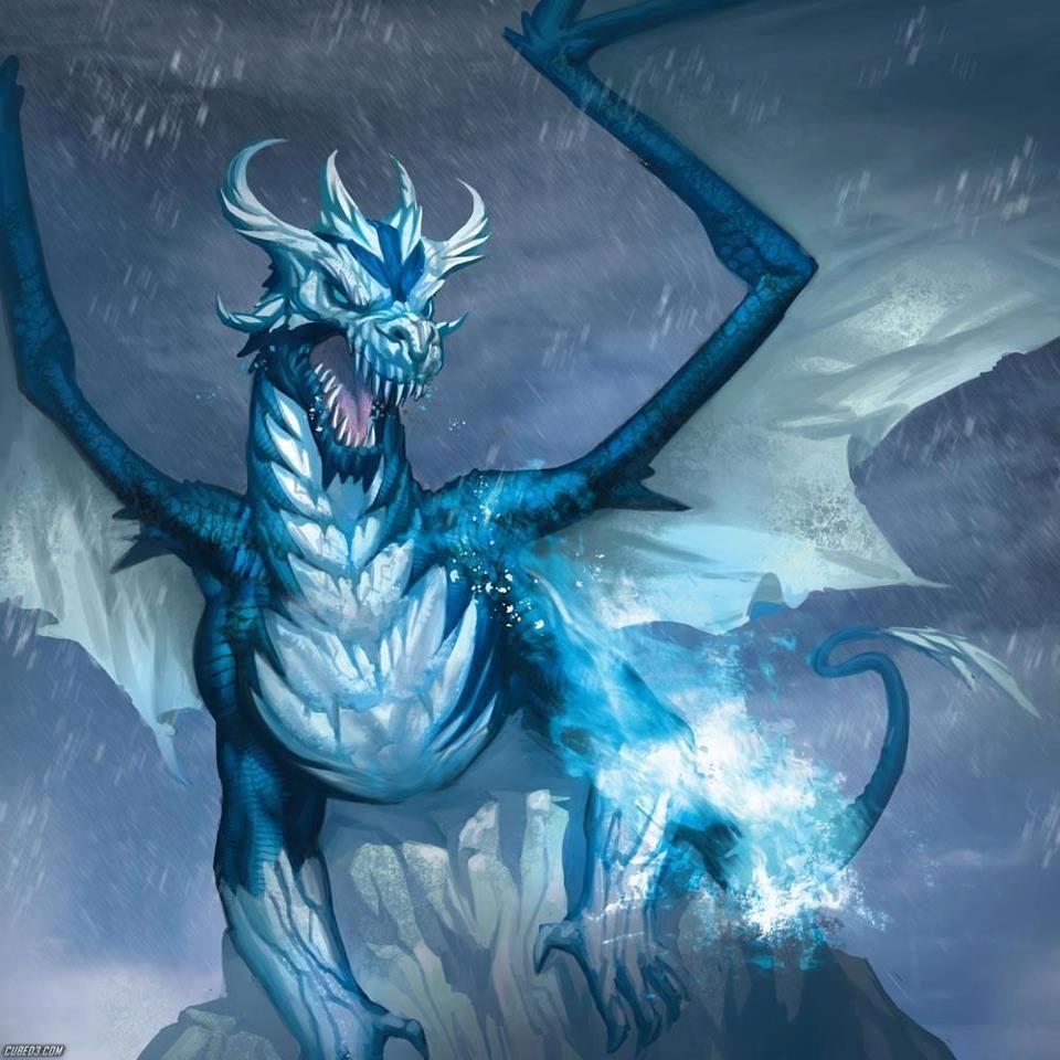 Snow, Ice, & Frost Dragons | Snow, Ice, & Frost Dragons ...