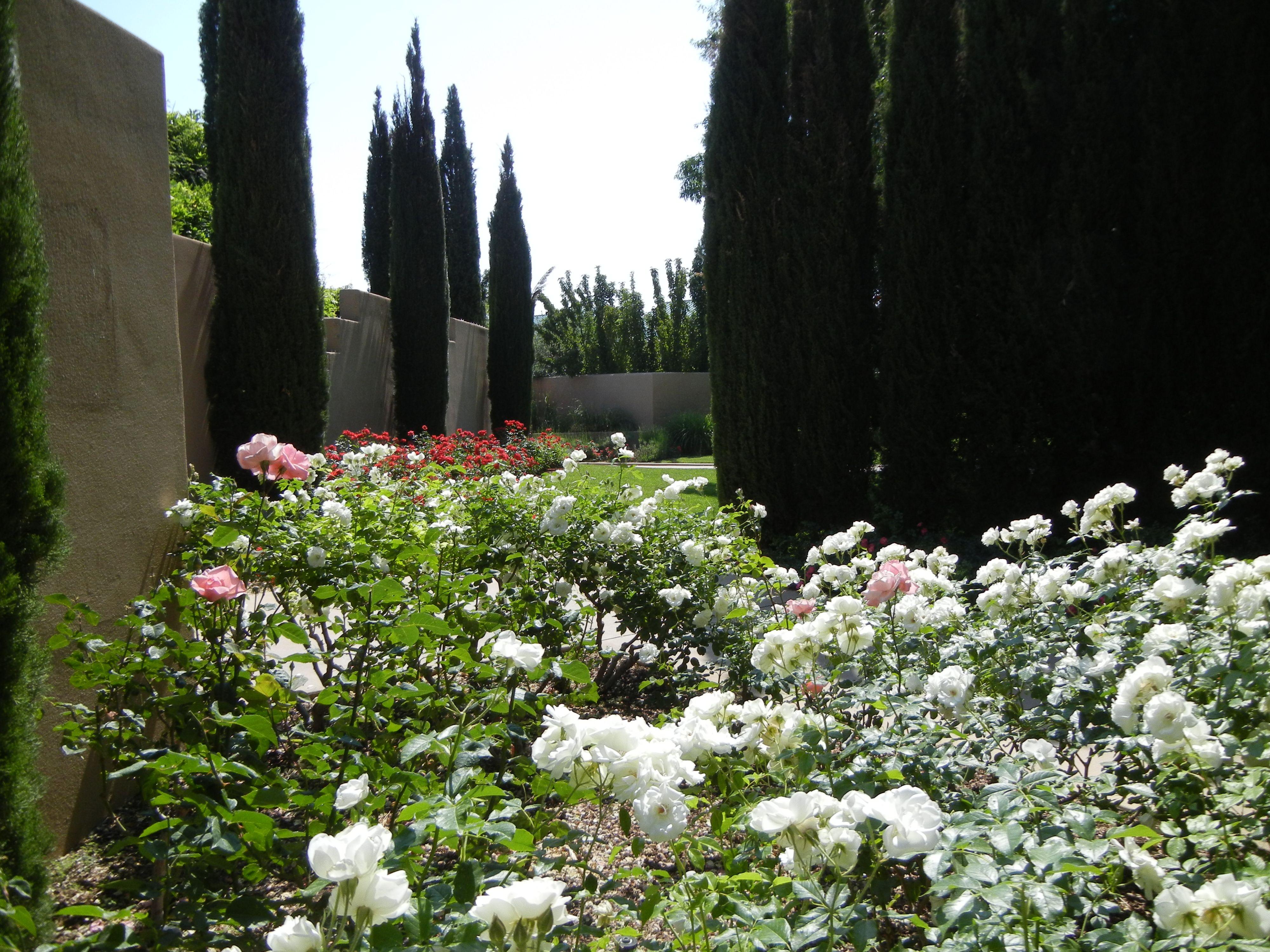 Botanical Garden Albuquerque New Mexico Favorite Places And Spaces
