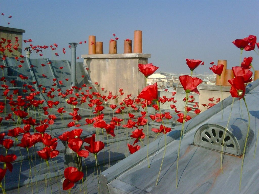 flower by kenzo Installations