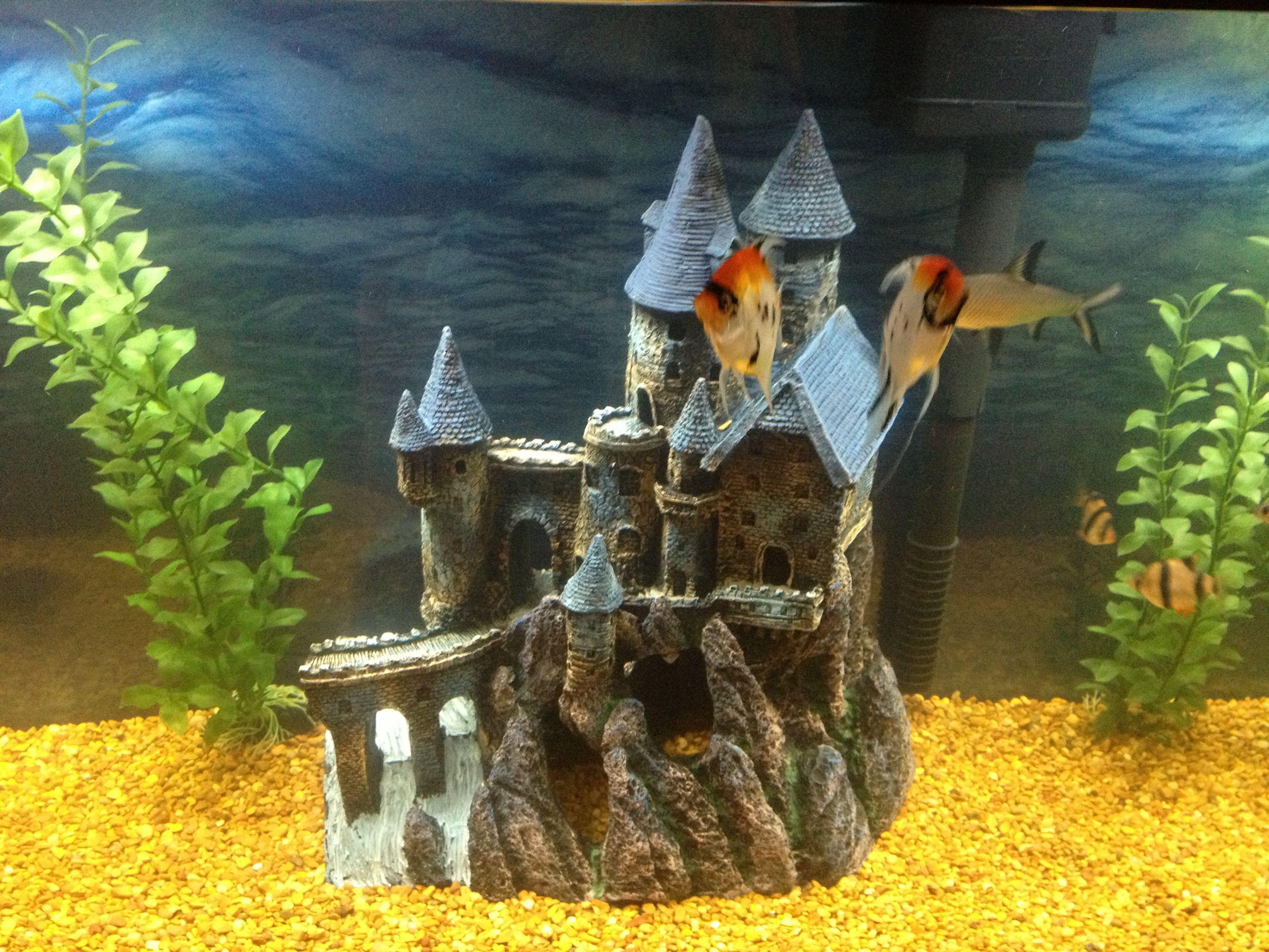 Fish tank castle elle pinterest for Fish tank castle