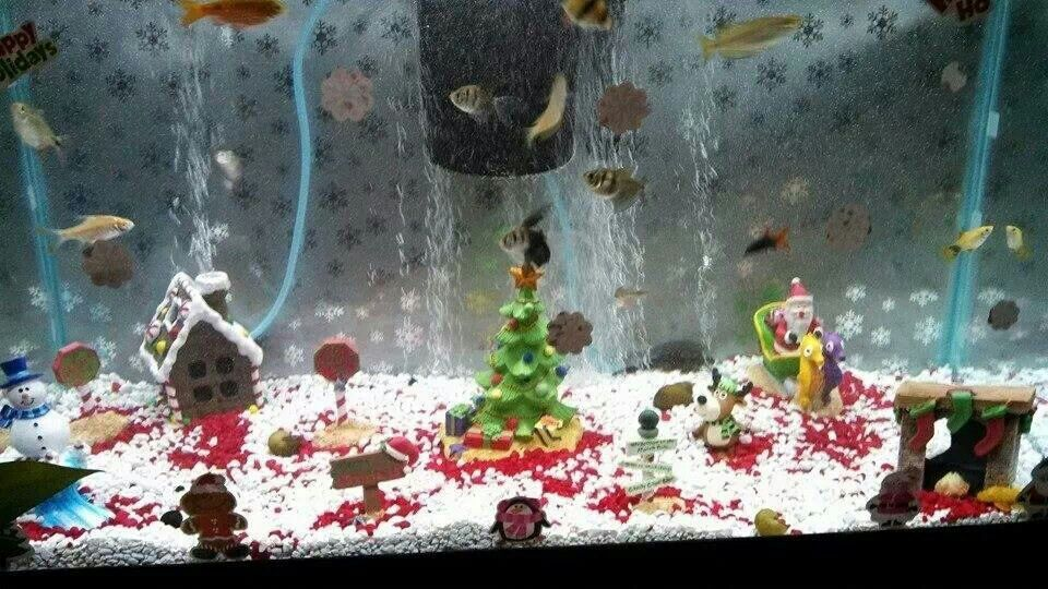 Christmas Ornaments For Fish Tank : Cute christmas fish tank