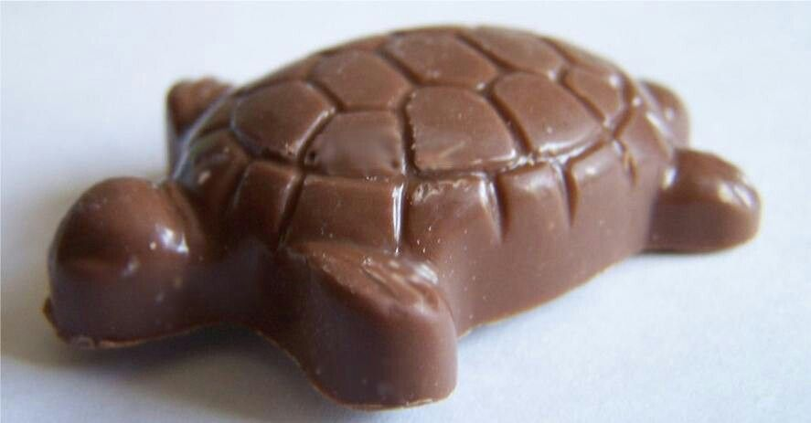 Chocolate,pecan,caramel turtles | Chocolates | Pinterest