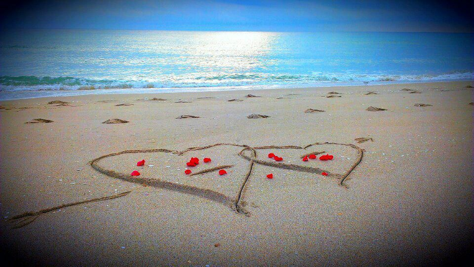 valentine's day beach wedding