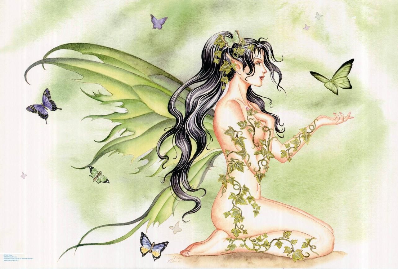 butterfly fairy images reverse search