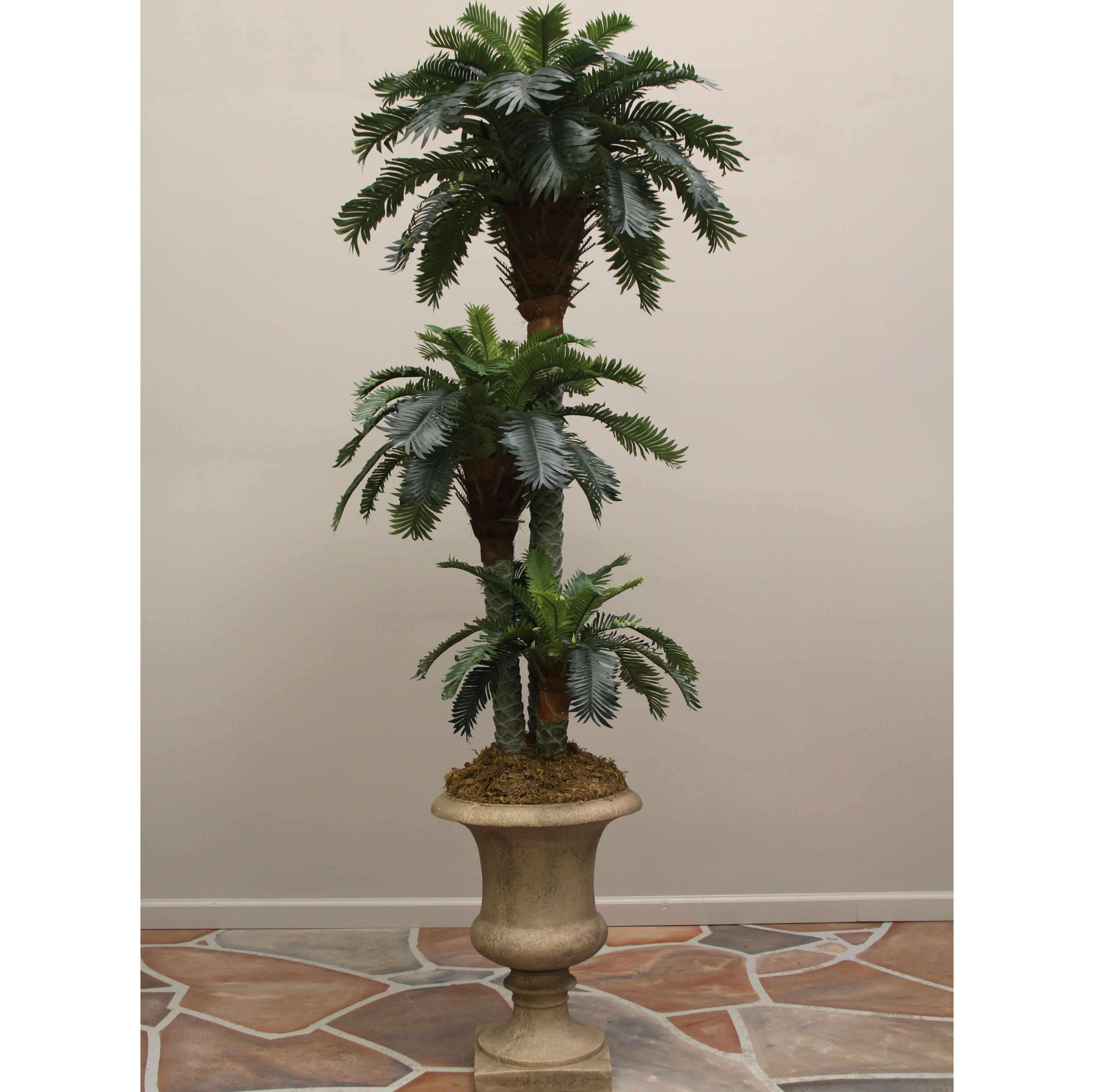 Palm Tree Home Decor 28 Images Palm Tree Home Decor Home Decorators Catalog Best Ideas of Home Decor and Design [homedecoratorscatalog.us]