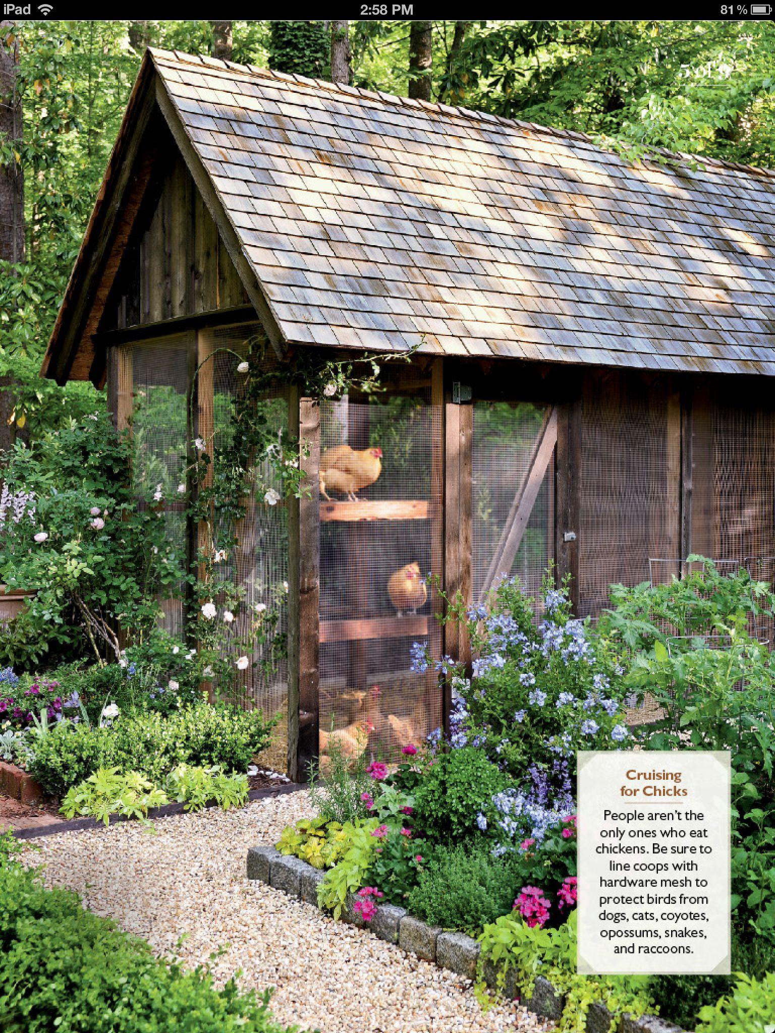Chicken house | chicken house ideas | Pinterest