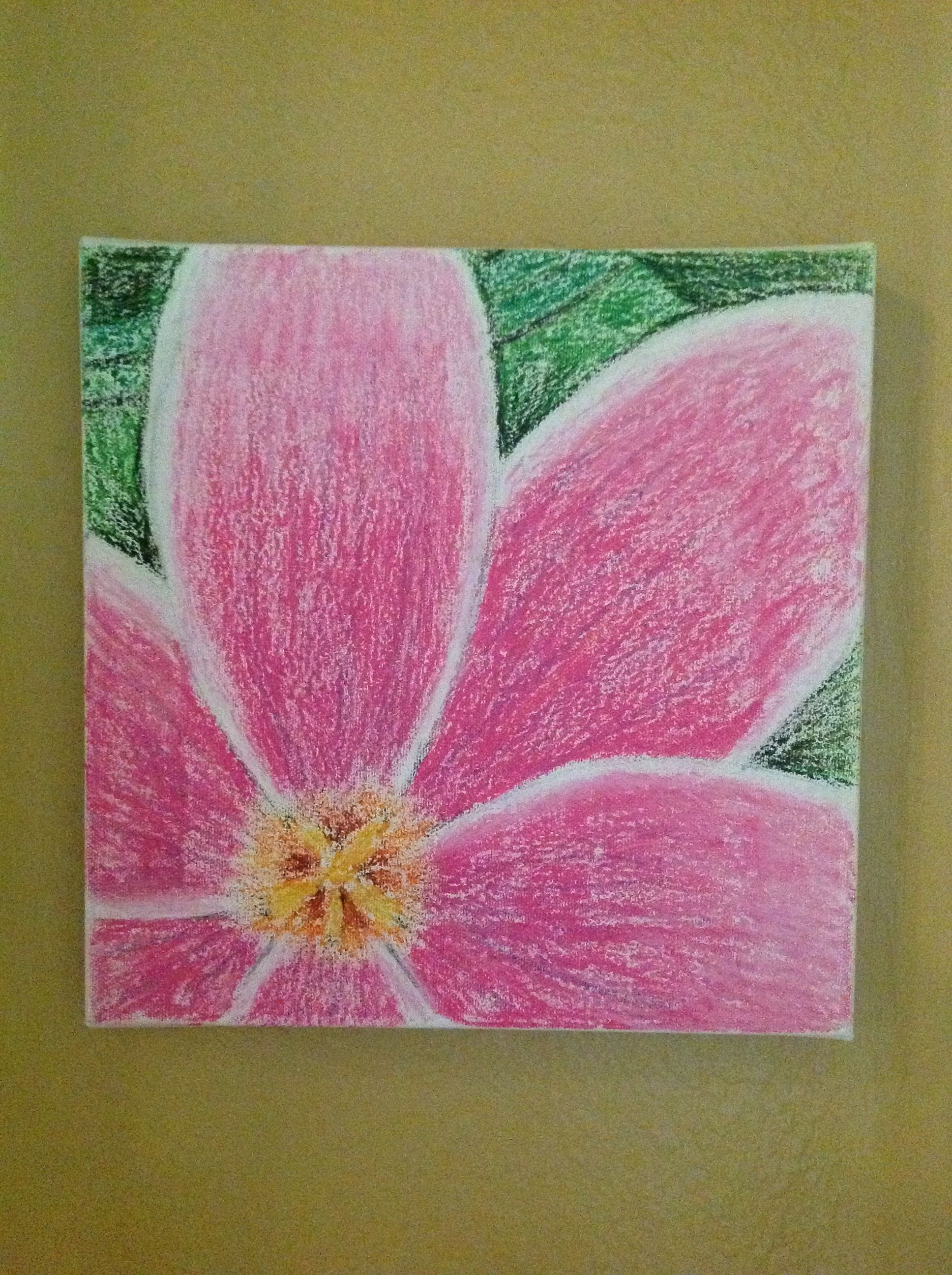 Oil pastels flower drawing Art Pastels