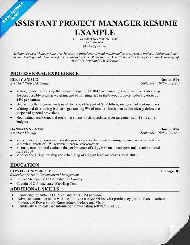 Resume For Project Manager