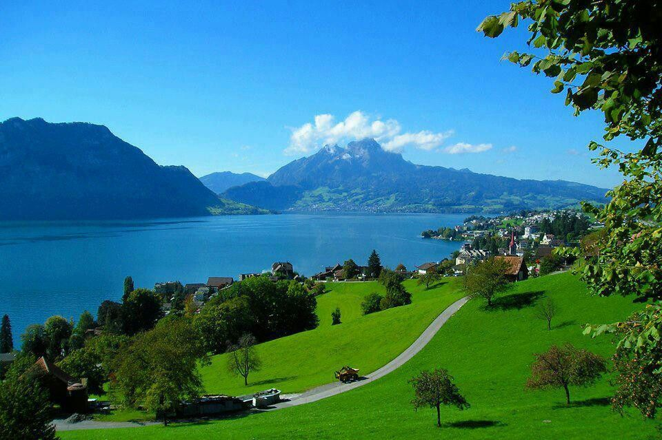 Weggis Switzerland  city pictures gallery : Lake lucerne Switzerland | Cool places | Pinterest
