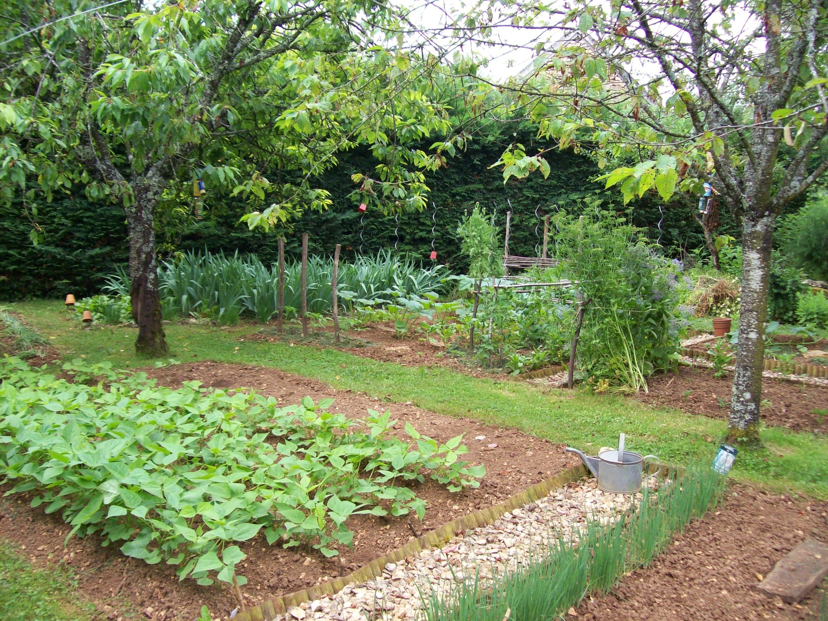 le potager garden and yard pinterest. Black Bedroom Furniture Sets. Home Design Ideas