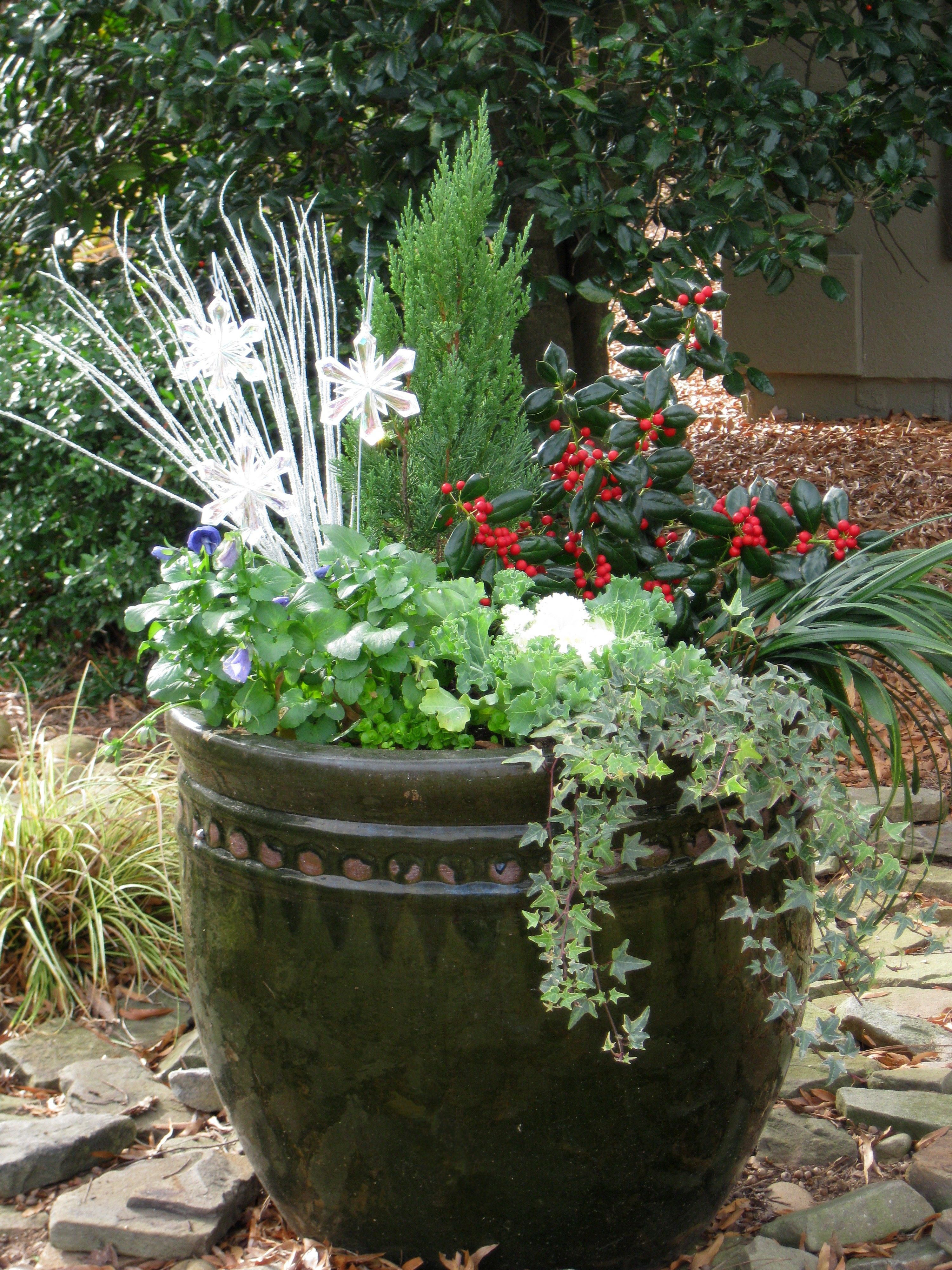 Pinterest Container Vegetable Gardening Ideas Photograph | C