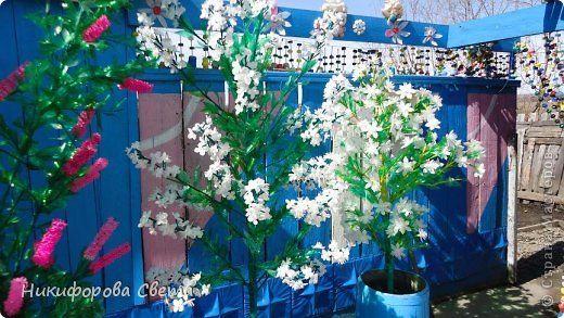 Цветы из бутылок для сада и огорода своими руками мастер класс