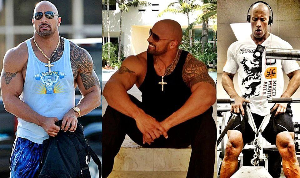 the rock transformation fitness and help pinterest