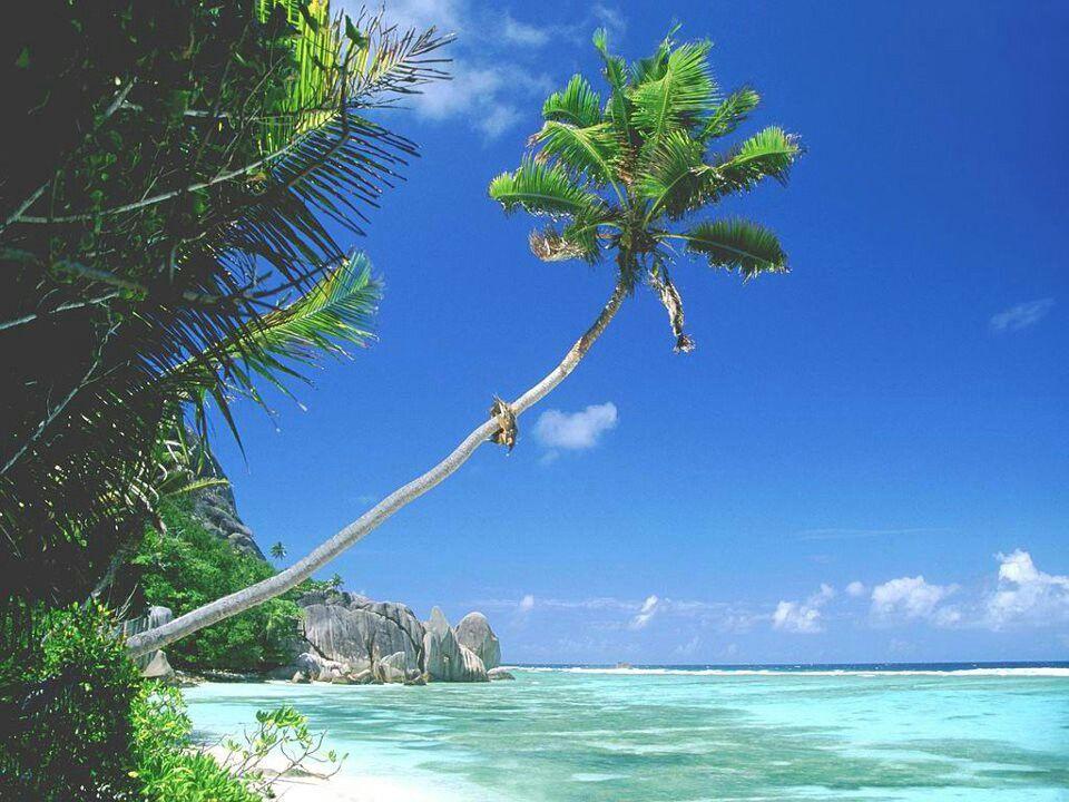 Goa Beach India Beautiful Places Pinterest