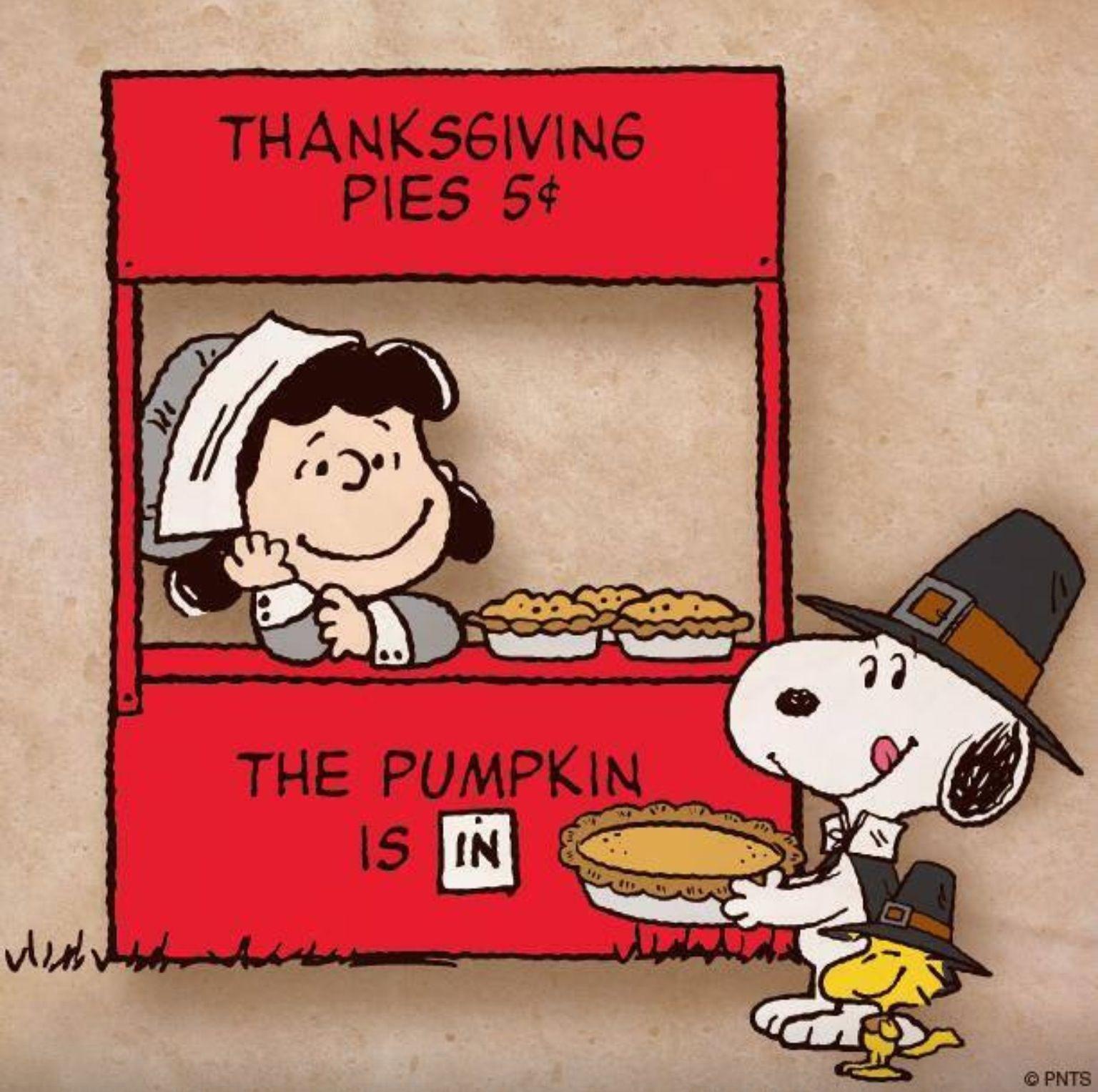 snoopy happy thanksgiving 4k - photo #22